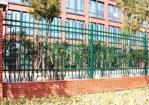 区城管局开展清洗隔离围栏志愿服务活动