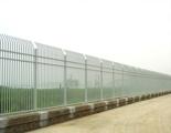 民警日常整治,男子无证逃跑撞围栏